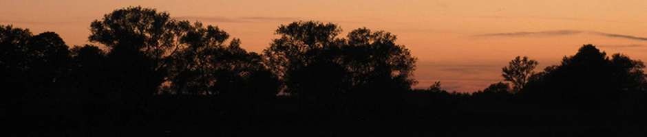Sonnenuntergang an der Oder
